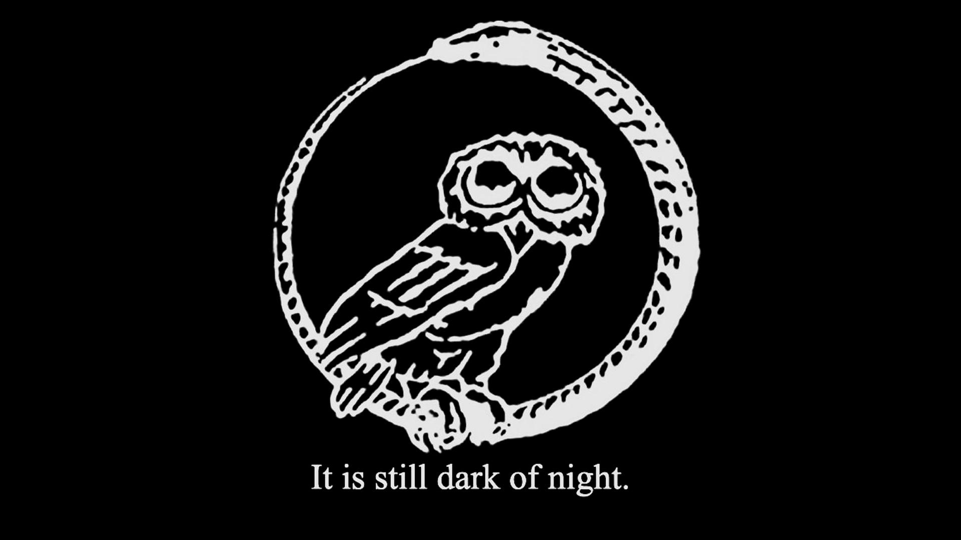 Amazing Wallpaper Home Screen Owl - dark_of_night_ouro  HD_655838.jpg