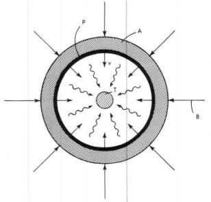 implosion_bomb_schematic